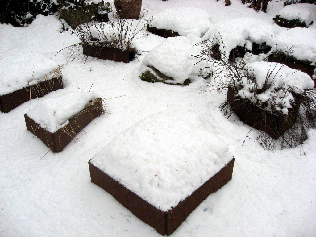 plantekummer med krydderurter i sne