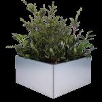 Land Modern - 80 x 80 cm plantekasse i galvaniseret stål