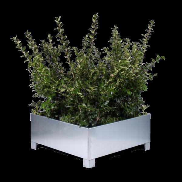 Ben til Modern plantekasser