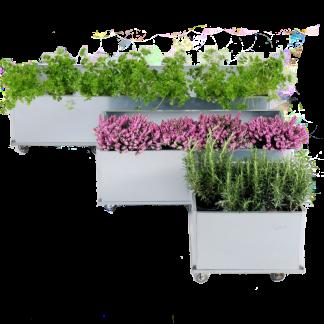 Blomsterkasser på hjul 40x40 40x80 og 40x120 cm fra Land Højbede til altanen