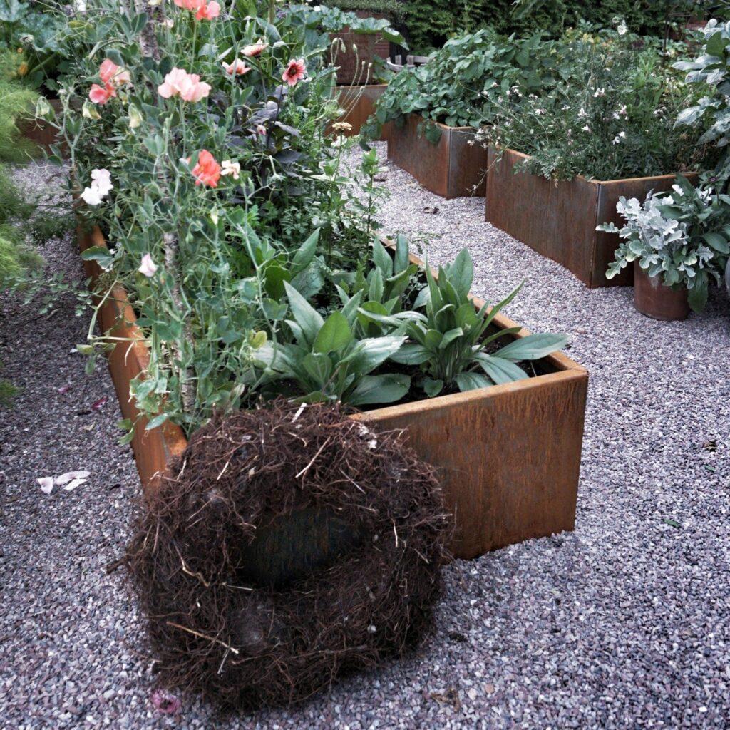 Land Modern store aflange plantekasser i cortenstål fra Land Højbede, med smukke blomster