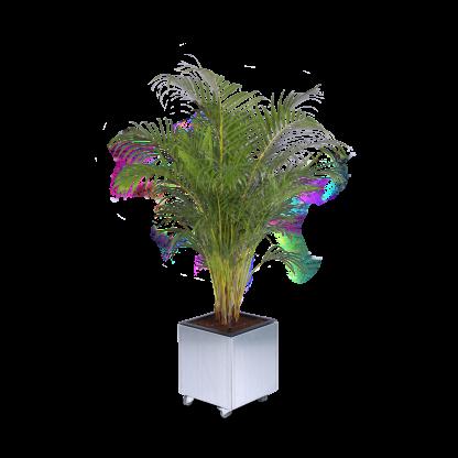 Mobil plantekasse fra Land Højbede med guldpalme