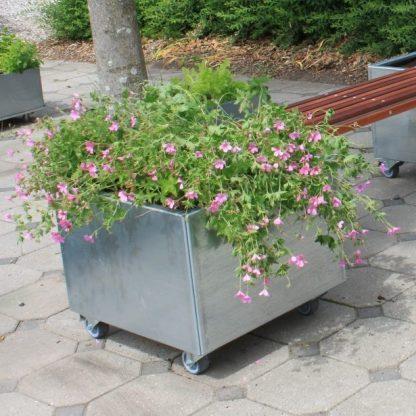 Land Modern 60 x 60 cm plantekasse i galvaniseret stål, her i mobil version