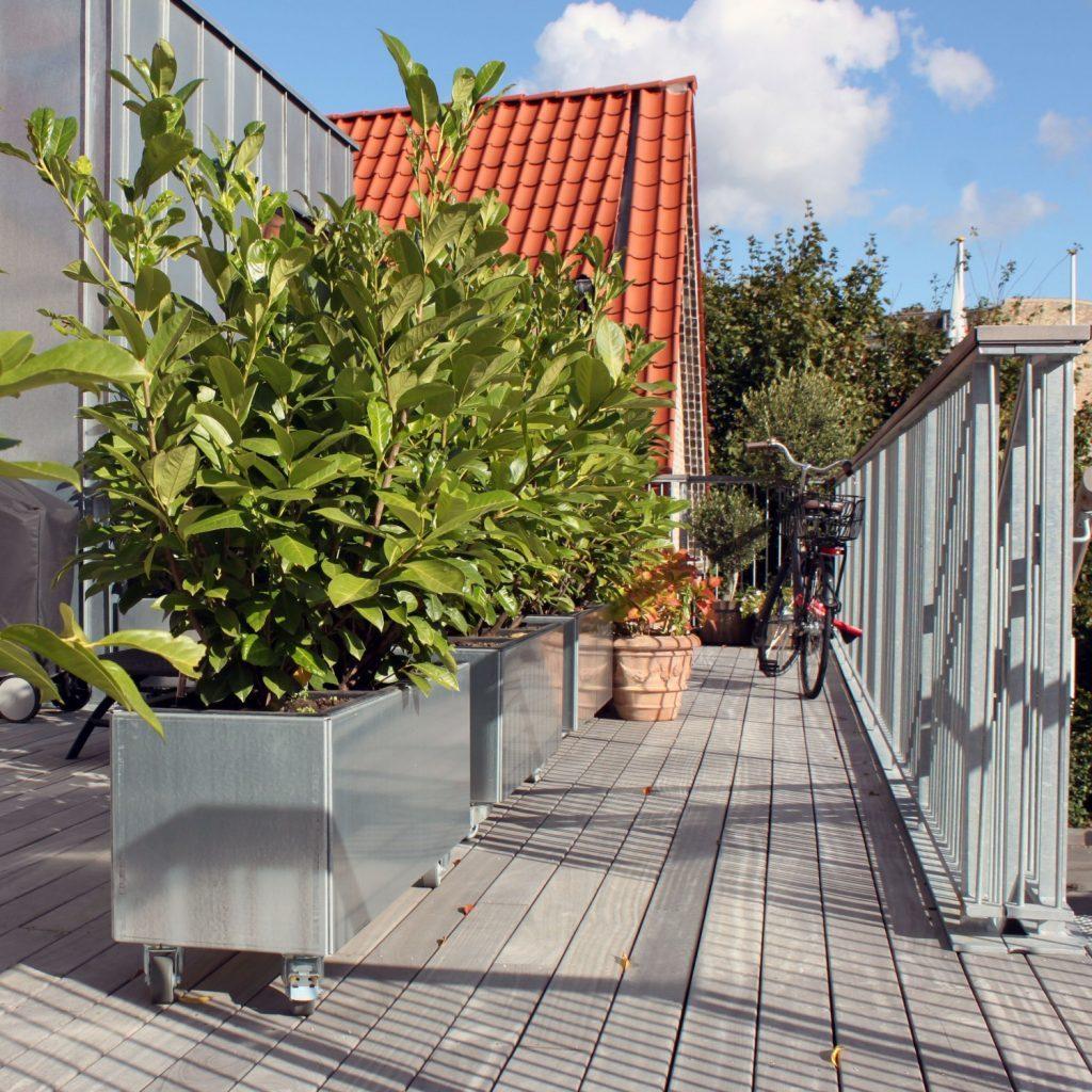 Land Modern plantekummer på hjul som mobil afskærmning på svalegangen
