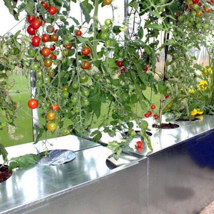 Kapilærkasse skjuler fra Land Højbede med tomater