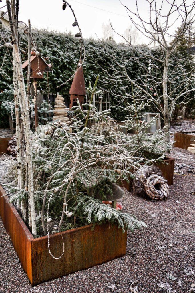 Land Modern plantekummer i cortenstål med rust look står flot med vintergrønt og rimfrost