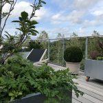 Have i højden - skønne grønne rum på taget og altanen